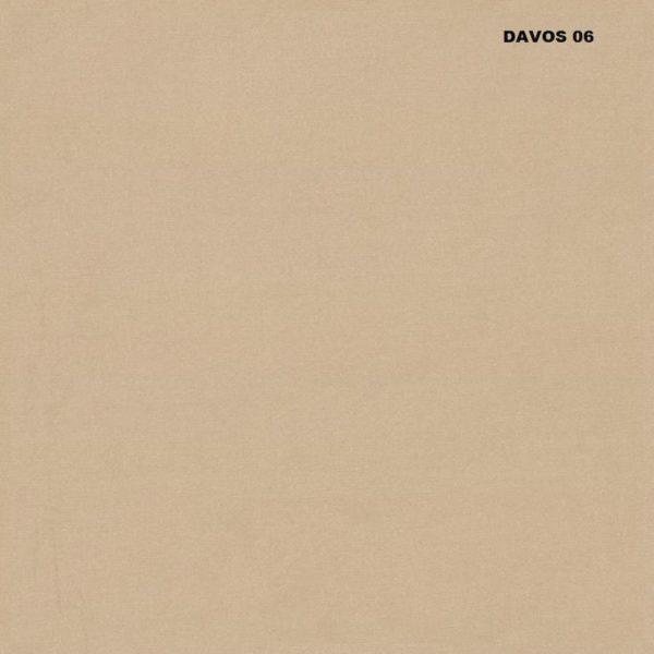 Davos 06