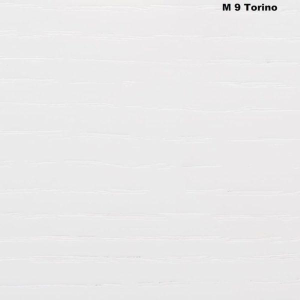 M9 Torino